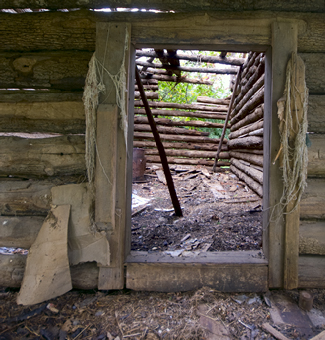 Entrance to primitive cabin