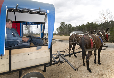 Gaylon's wagon goes far and beyond what one normally expects to find behind mules. Hydraulic brakes, a radio, electrically adjustable bucket seats. He bought the wagon from Junior Griggs in Como TX. Apparently, Junior is well known among mule aficionados as a reliable source of custom wagons, harness items and tack