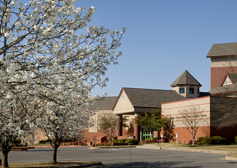 Bradford Pear Blooms at the Arts and Science Center for Southeast Arkansas on Main Street in Pine Bluff AR.