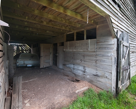 This is the corn crib and storage side of the barn. It is floored to keep feed, leather tack and other supplies off the ground and as far away from hungry varmints as possible. The hole in the ground on this side attests to that this side still as some attraction to burrowing critters. Herman has, among other things, a hammer mill stored on this side.