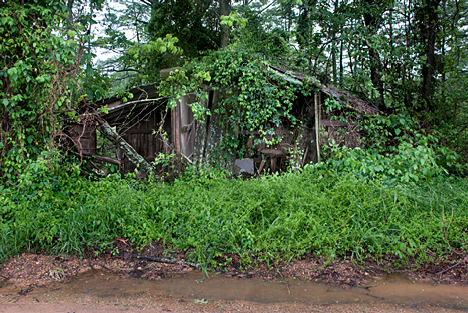 If you blink, you'll miss this now well camouflaged former dwelling on Mabry Road in souther Jefferson County AR.