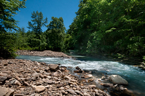 Just upstream, two branches of the same stream or a couple of different creeks come together over a bed of rocks and gravel. White water and more gurgling. It is a pristine site with natural sound effects.