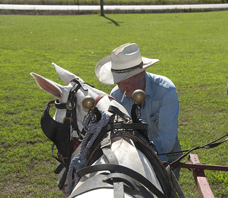 John Cruce fixes a twisted bridle, which made for a nervous mule.