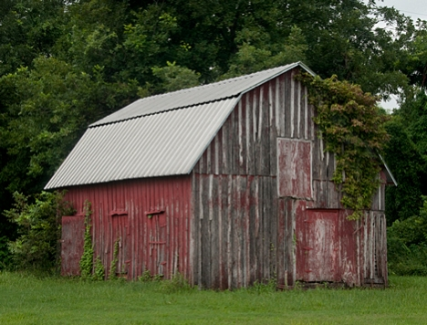 An old barn near Lonoke, Arkansas, with a new roof. At long last, someone cares!