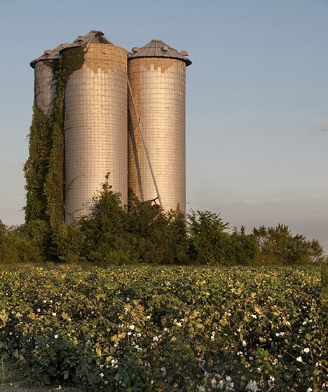 Old grain elevators in a cotton patch, just off US Highway 65 north of Lake Village