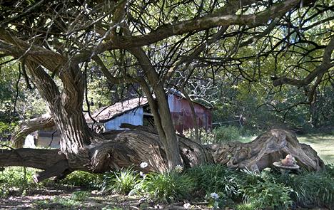 The horizontal tree.