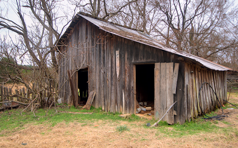 old cow barn