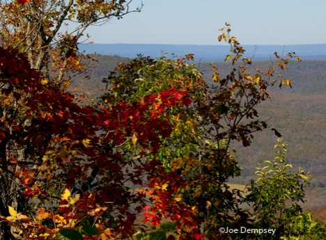 View of fall foliage from mountain top