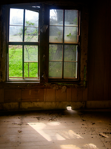 Looking out old windows