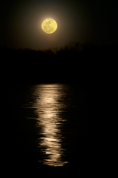 moon reflection over lake langhofer