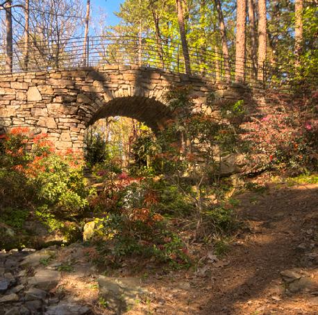 Full Moon bridge at Garvan Woodland Gardens