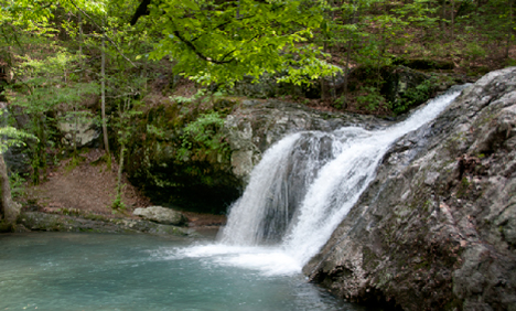 Falls at Lake Catherine State Park