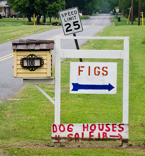 Figs and dog houses