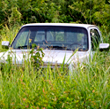 pickup abandoned on weeds