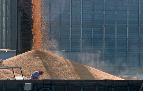 corn grainery