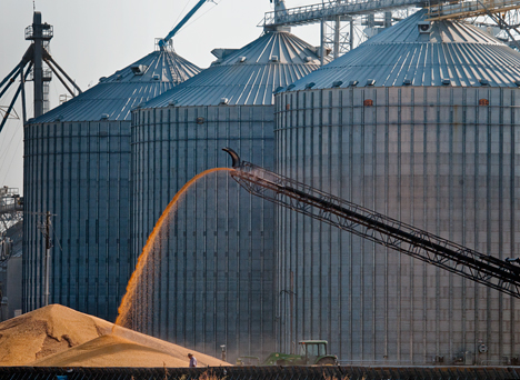 Giant grain bins