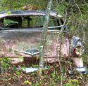 abandoned 1955 pink ford fairlane