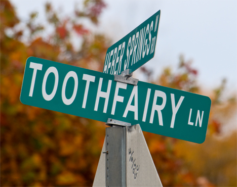 Toothfairy Lane street sign