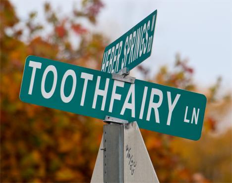 Toothfairy Lane street sign