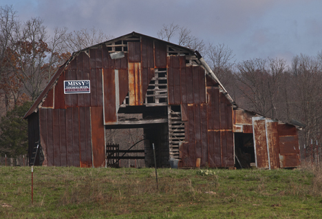 Barn with corrugated roofing sides