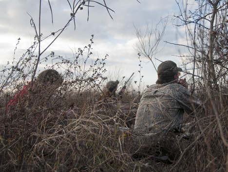hunters watching approaching geese