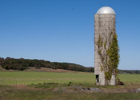 Silo in pasture