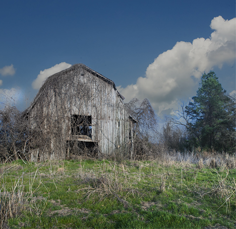 Old barn north of Pine Bluiff Arkansas