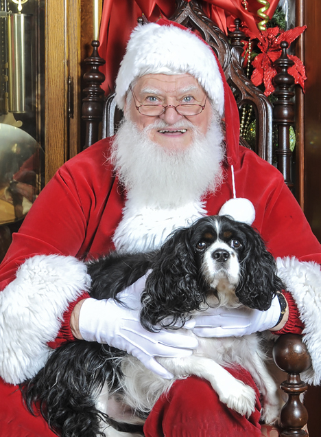 santa with spaniel