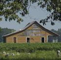 old-delta-farmhouse