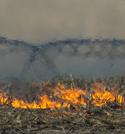 Center pivot in field fire