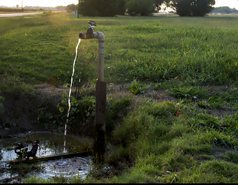 Dripping water faucet in sunset
