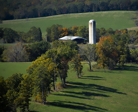 Silo in pasture near Rockbridge Missouri