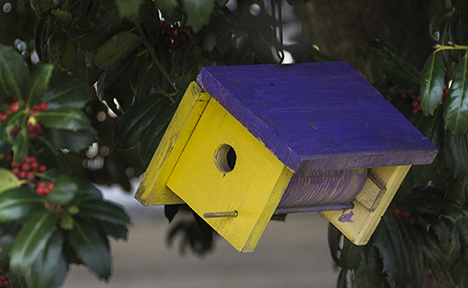Yellow  and purple birdhouse