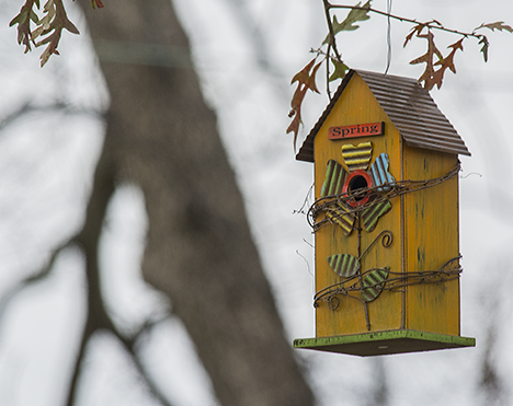 Yellow birdhouse