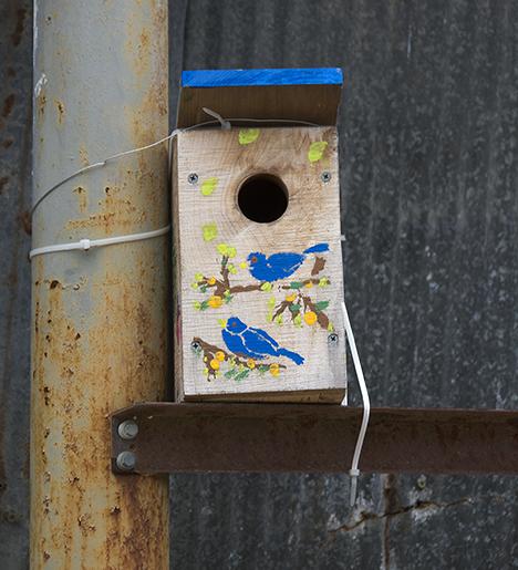 birdhouse in obscure corner