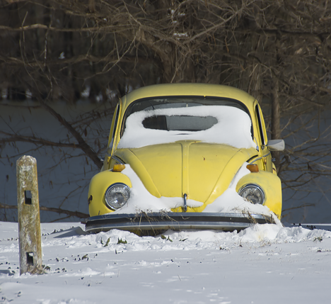 Yellow Volkswagen bug