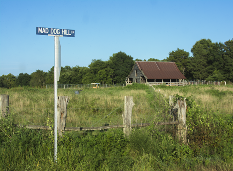 Mad Dog Hill Lane road sign