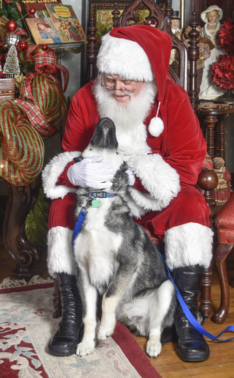 Dog and santa looking at each other
