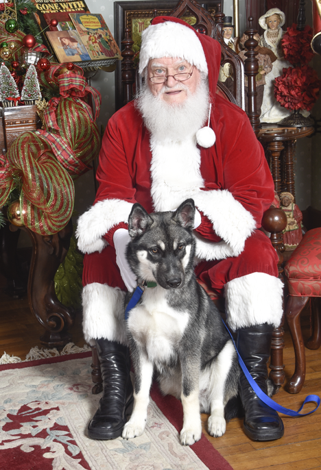 Santa and husky