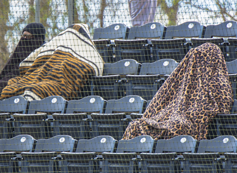 Bundled up fans at a cold baseball game
