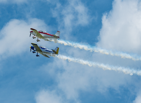 Two Bull Dog Flight aircraft