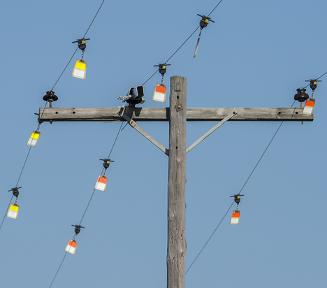 Power poles and wires